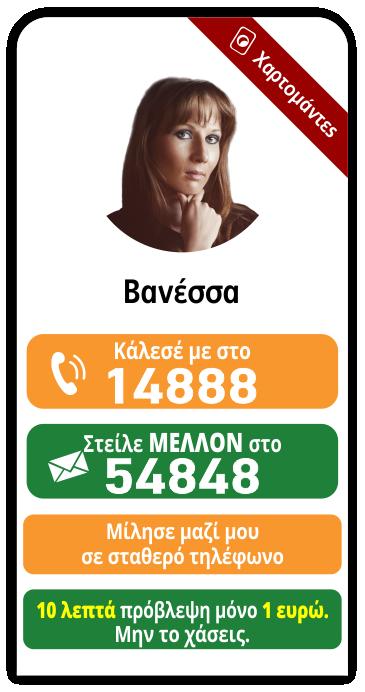 banner-vanessa